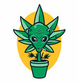 cannabis in pot with alien face vector image vector image