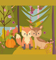 cute deer and fox with pumpkin foliage hello vector image vector image