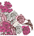 floral pattern with roses and hummingbird vector image