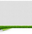 green grass border with white paper and corner vector image vector image