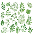 green set vector image