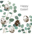 happy easter or spring greeting card quail eggs vector image vector image