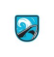 shark logo icon design vector image