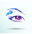 with beautiful female eyes with different makeup vector image
