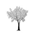 tree with leaves drawn sketch summer nature sign vector image