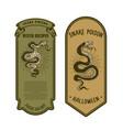 halloween snake poison bottle label template vector image vector image