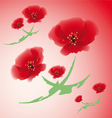 poppy flowers vector image vector image