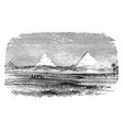 pyramids egyptian landscape vintage engraving vector image vector image