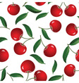 red cherry vector image vector image