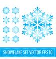 set various snowflakes vector image
