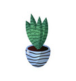 succulent striped green flower pot for room design vector image