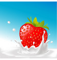 splash of milk with big strawberry- with blu vector image