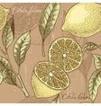 Vintage lemon seamless background vector image
