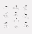 animals mini floral graphic signs vector image vector image