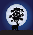 bear on a moonlight color vector image vector image