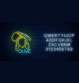 glowing neon sign olive branch with leaves vector image