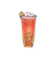 iced tea drink with ice cubes and lemon slice vector image