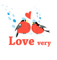 new year postcard with bullfinches vector image