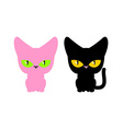 Pink and black cat set pets Animal on white vector image vector image