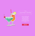 summer drinks color party advertisement web banner vector image