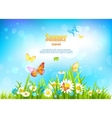 Sunny day background with flowers vector image vector image