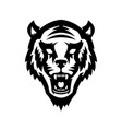tiger head icon on white background design vector image vector image
