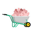 wheelbarrow and penis pile dick in garden trolley vector image