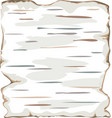 birch bark background frame isolate vector image vector image