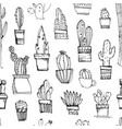cacti handdrawn sketch seamless pattern pattern vector image vector image