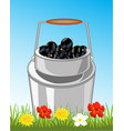 can with berry in herb vector image vector image