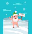 cartoon pig in green hat and in santa claus beard vector image