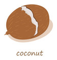 coconut icon isometric 3d style vector image vector image
