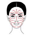 facial massage line vector image