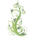 spring time snowdrop vector image vector image