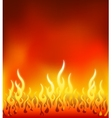 Burn flame fire background vector image vector image
