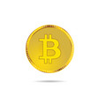 cryptocurrency money gold vector image vector image