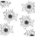 floral spring background vector image vector image