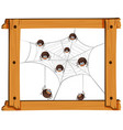 many spiders on the web vector image vector image
