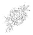 peony flowers and leaves tattoo compositions vector image