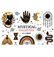 set isolated mystical and magic elements vector image