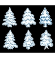 Set of chistmas pines vector image vector image