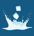 splash of ice water vector image