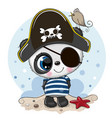 cute cartoon panda in a pirate hat vector image