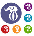 elephant balancing on a ball icons set vector image vector image