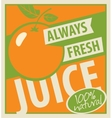oranges and fresh juice vector image vector image