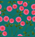 pink dahlia on green teal background vector image vector image