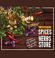 spice and herb sketch poster on wooden background
