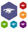 aquatic dinosaur icons set hexagon vector image vector image