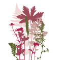 tempalte with leaves and plants silhouettes vector image vector image