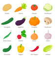 vegetables signed names icons set isometric style vector image